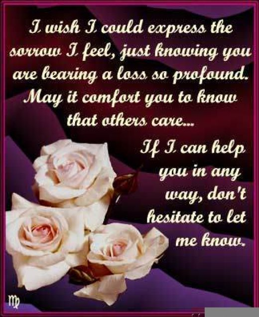 Sympathy Quotes i wish i could express the sorrow i feel....
