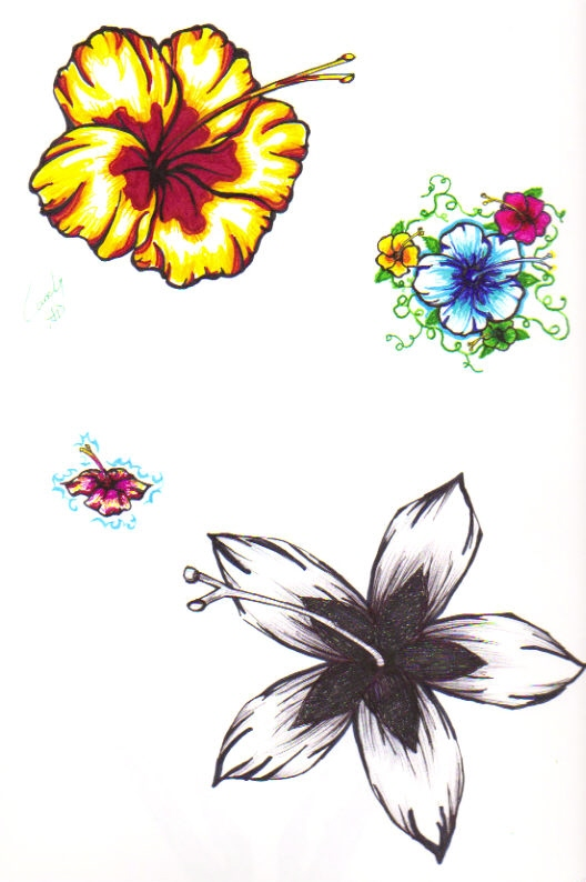 Traditional Hibiscus Tattoo Samples For Boys