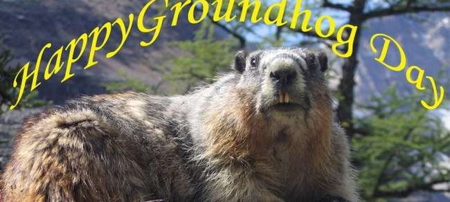Warm Wishes Happy Groundhog Day