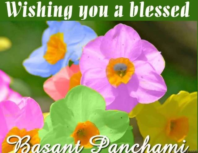 Whatsapp Happy Basant Panchami Wishes Images