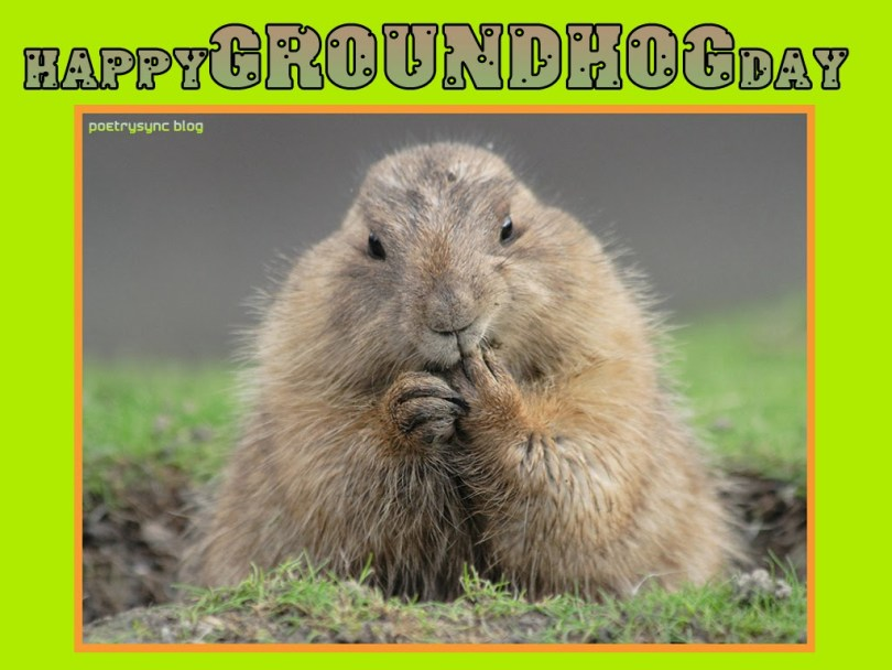 Wish You Happy Groundhog Day