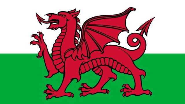 Best Wishes St David's Day Wishes Image