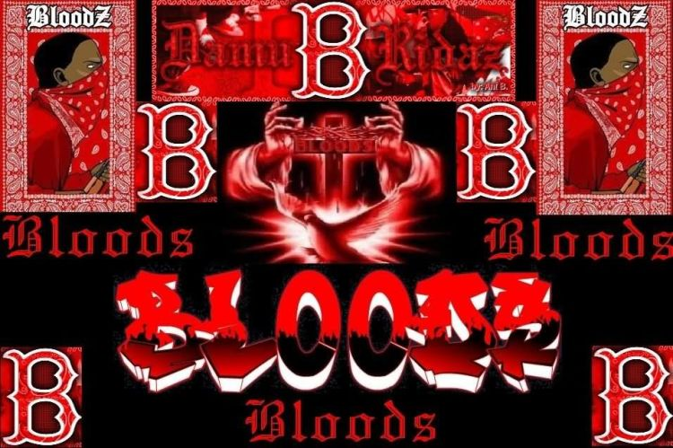 Blood Gang Quotes bloodz bloods bloods