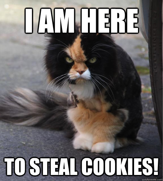 Cookie Meme i am here to steal cookies
