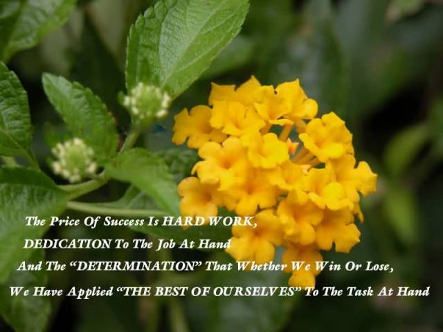 Determination Quotes the price of success is hard work dedication to the