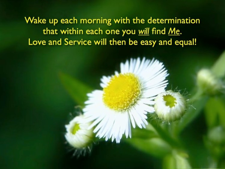 Determination Quotes wake up each morning with the determination