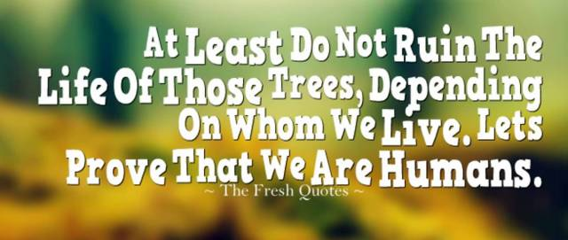 Earth Day Quotes at least do not ruin the life of those trees