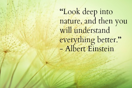 Earth Day Quotes look deep into nature and then you will understand (2)