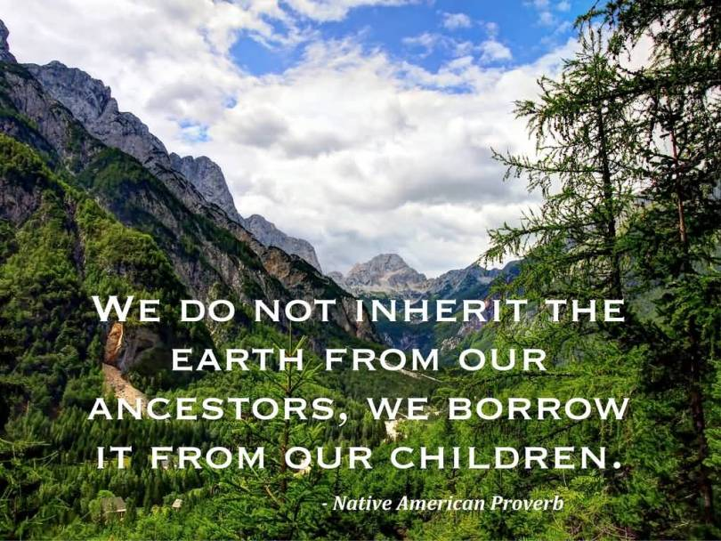 Earth Day Sayings we do not in hermit the earth from our