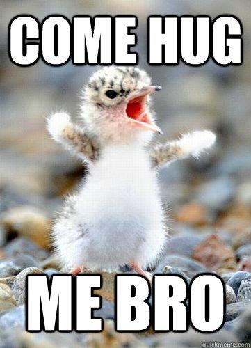 Funny Hug Meme Come hug me bro