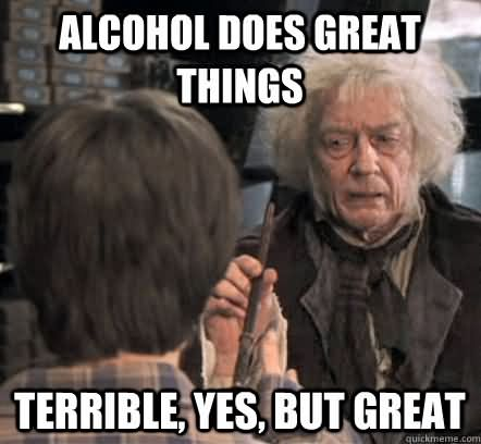 Funny Party Meme Alcohol Does Great Things Terrible Yes But