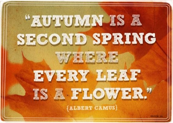 Goodbye Summer Quotes autumn is a second spring where every leaf is a flower