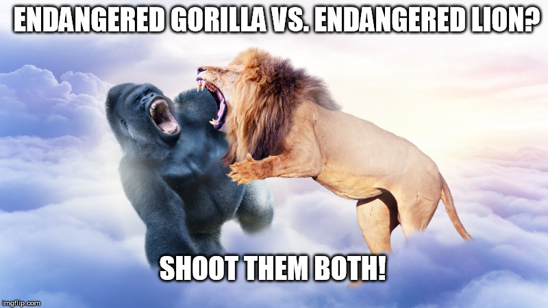 Harambe Memes Endangered Gorilla Vs. Endangered Lion Shoot Them Both