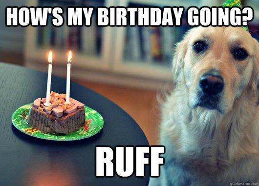 How's my birthday going ruff Sad Meme