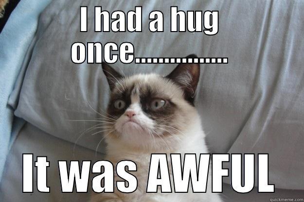 I had a hug it was awful Hug Memes