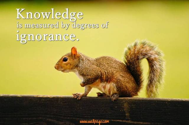 Interesting sayings knowledge is measured by degree of ignorance