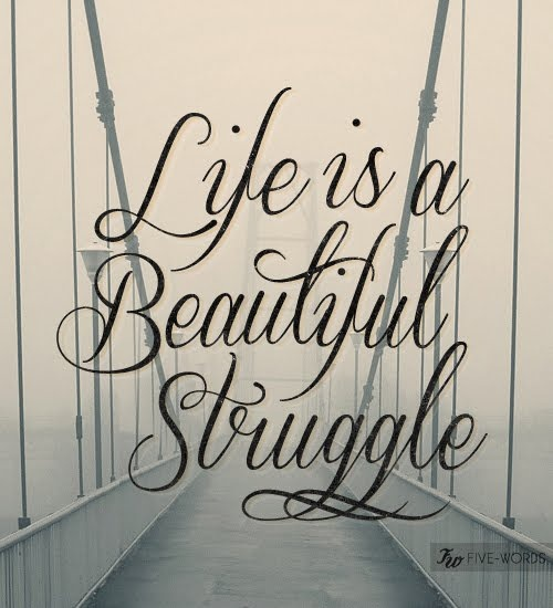 Interesting sayings life is a beautiful struggle
