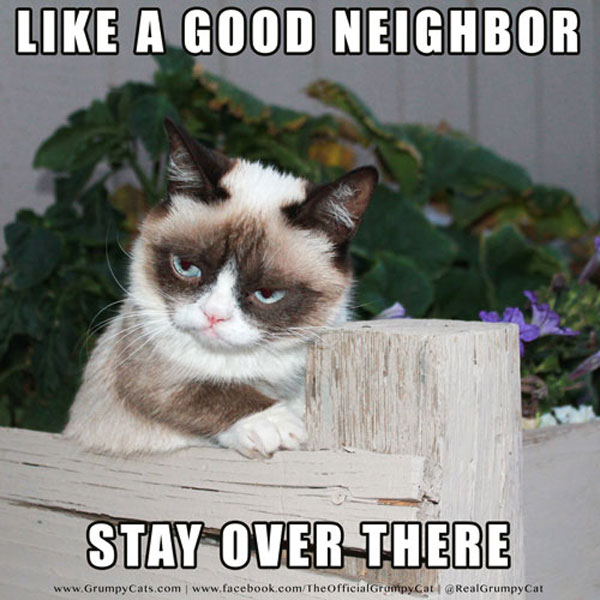 Like A Good Neighbor Grumpy Cat Memes