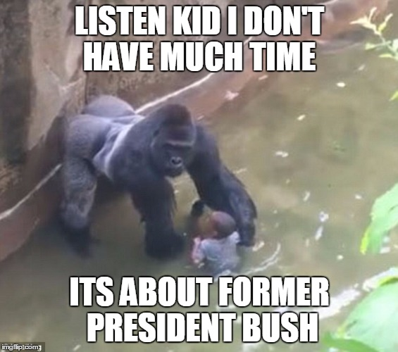 Listen Kid I Don't Have Much Time Its About Former Harambe Memes