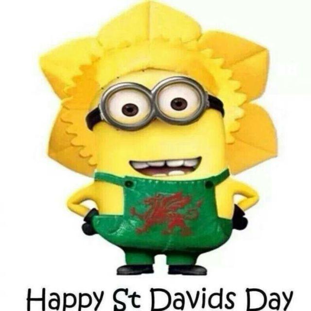 Minion Celebrate St David's Day Wishes Image