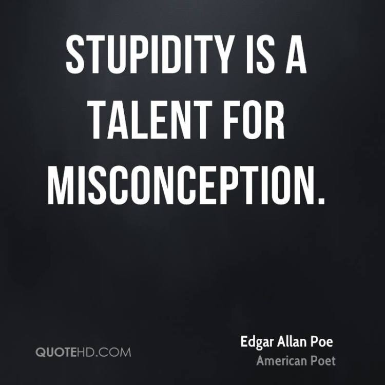 Misconception Sayings stupidity is a talent for misconception (2)