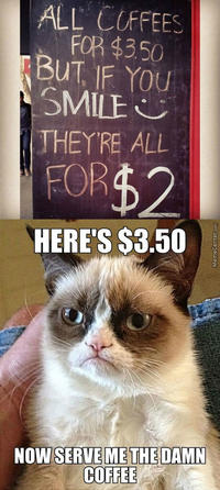 Now Save Me The Damn Grumpy Cat Memes