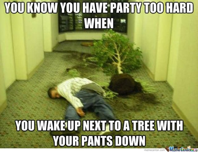 Party Memes You know you have party too hard when