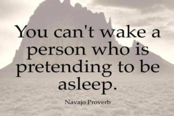 Pretending Sayings you can't wake a person who is pretending to be asleep