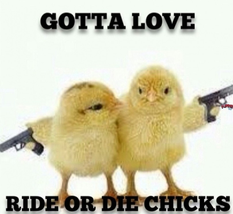 Ride or Die Quotes gotta love ride or the chicks