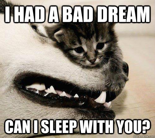Sad Meme i had a bad dream can i sleep with you
