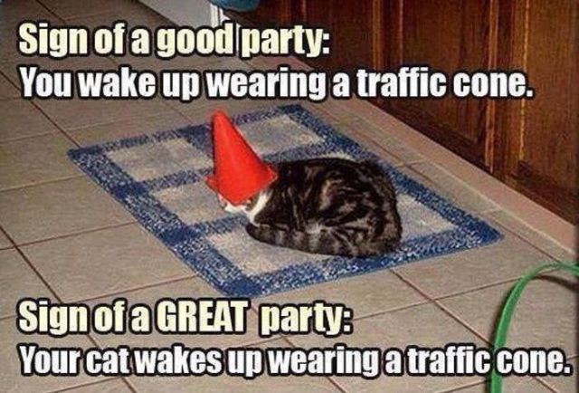 Sign of a good party you wake up wearing a traffic cone Party Meme