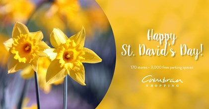 St. David Day Images Best Wishes Message Image