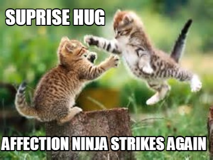 Suprise hug affection ninja strikes again Funny Hug Meme