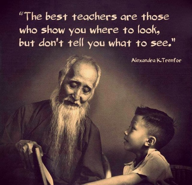 Teach Sayings the best teachers are those who show you where to look but don't tell you want to see