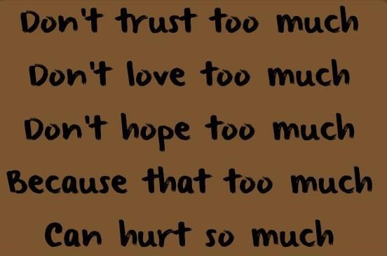 Trust Quotes Don't Trust Too Much Don't Love Too Much Don't Hope Too Much Because That Too Much Can Hurt So Much.
