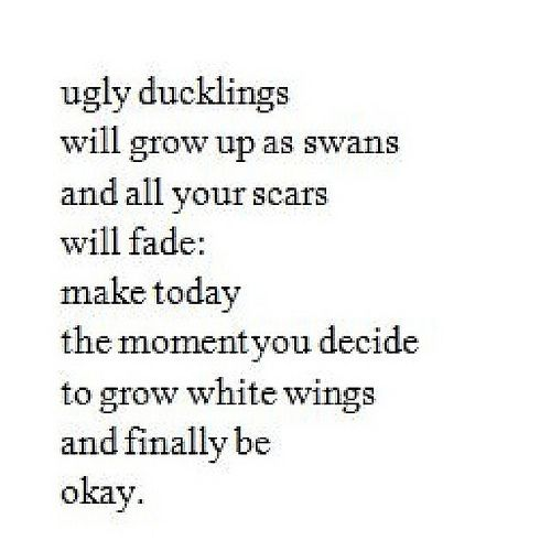 Ugly Quotes Ugly ducklings will grow up as swans and all your scars will fade
