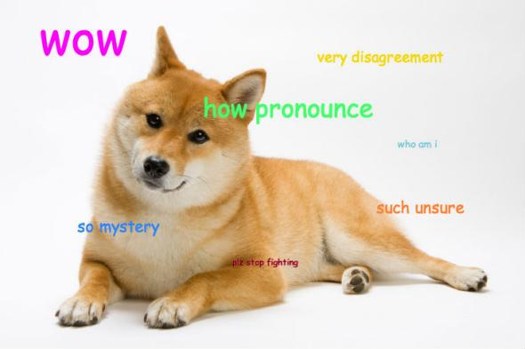 doge meme wow very disagreement how pronounce so mystery
