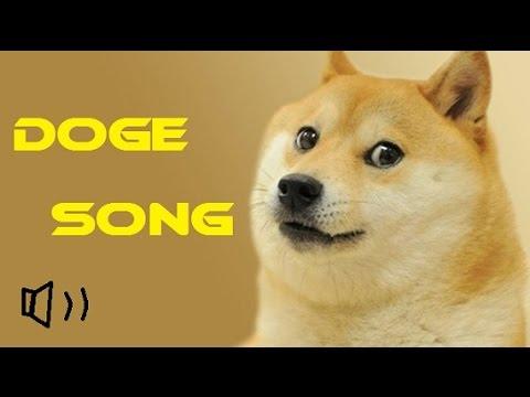 doge song dddd doge meme