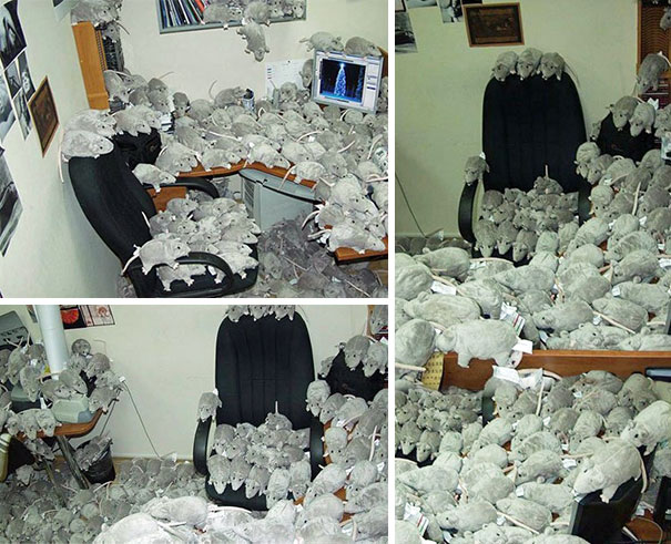 Best April Fools Day Pranks 039