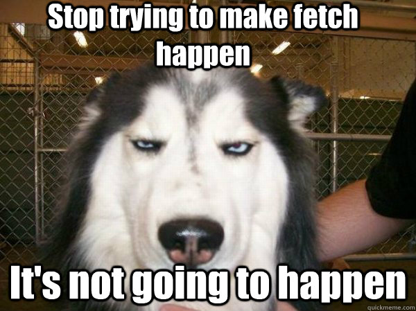 Bored Meme Stop trying to make fetch happen it's not going to happen
