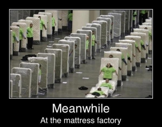 Bored Meme meanwhile at the mattress factory