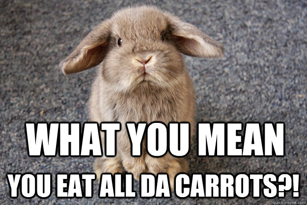 Bunnies Memes what you mean you eat all da carrots