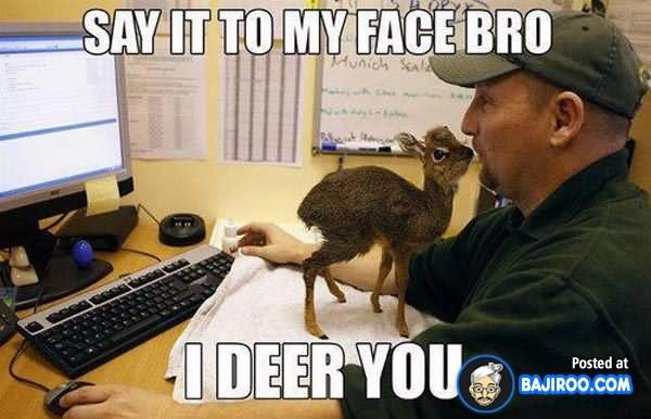 Cool Meme say it to my face bro i deer you