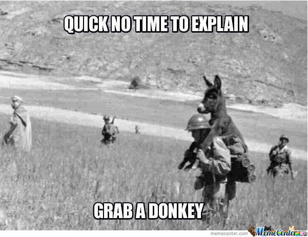 Donkey Meme Quick no time to explain grab a donkey