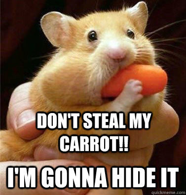 Don't steal my carrot im gonna hide it Hamster Memes