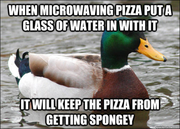 Duck Meme When microwaving pizza put a glass of water