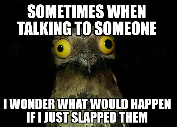 Duck Meme sometimes when talking to someone i wonder