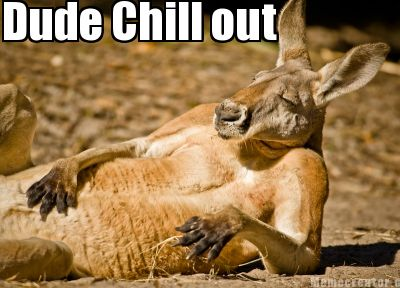 Dude chill out Kangaroo Memes