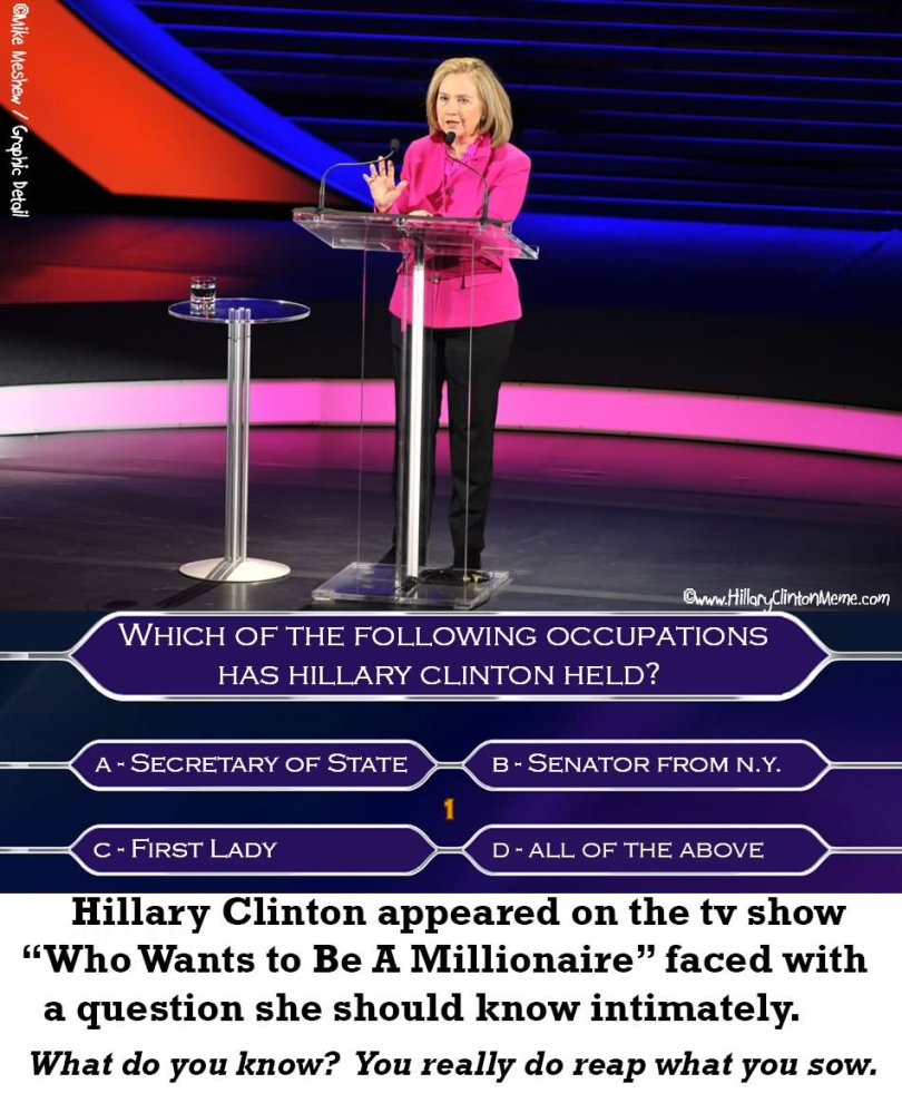 Funny Which of the following occupations has hillary clinton held Hillary Clinton Meme