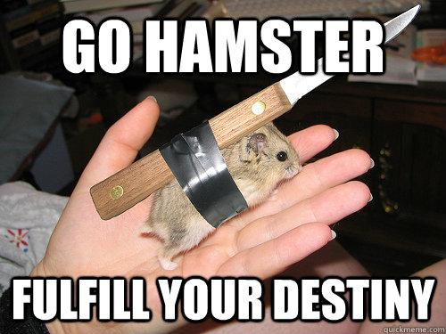 Go hamster fulfill your destiny Hamster Meme
